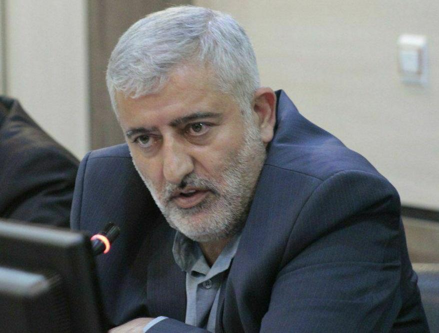 دستگاههای نظارتی در روند توزیع نهادههای وارداتی با ارز دولتی ورود کنند