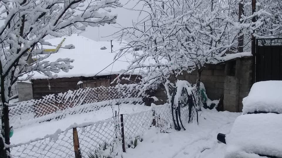 بارش شدید برف و باران و کاهش محسوس دما در گیلان