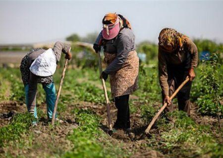 راهاندازی ۵ صندوق اعتبارات خرد زنان روستایی و عشایری در آستانهاشرفیه