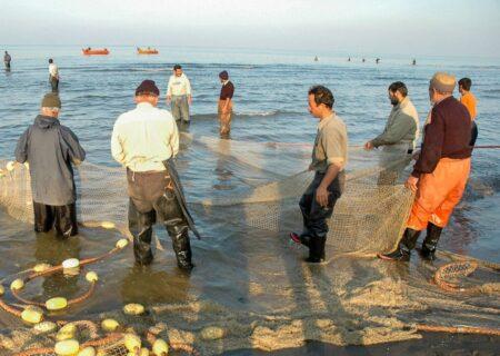 کاهش ۱۰ درصدی صید ماهیان استخوانی در سواحل آستانهاشرفیه